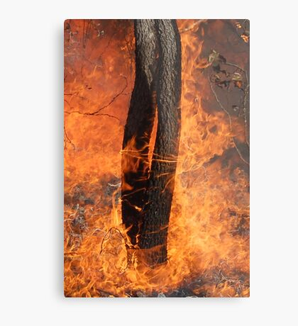 Fingers Of Fire Metal Print