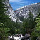 Yosemite National Park California by David Akers