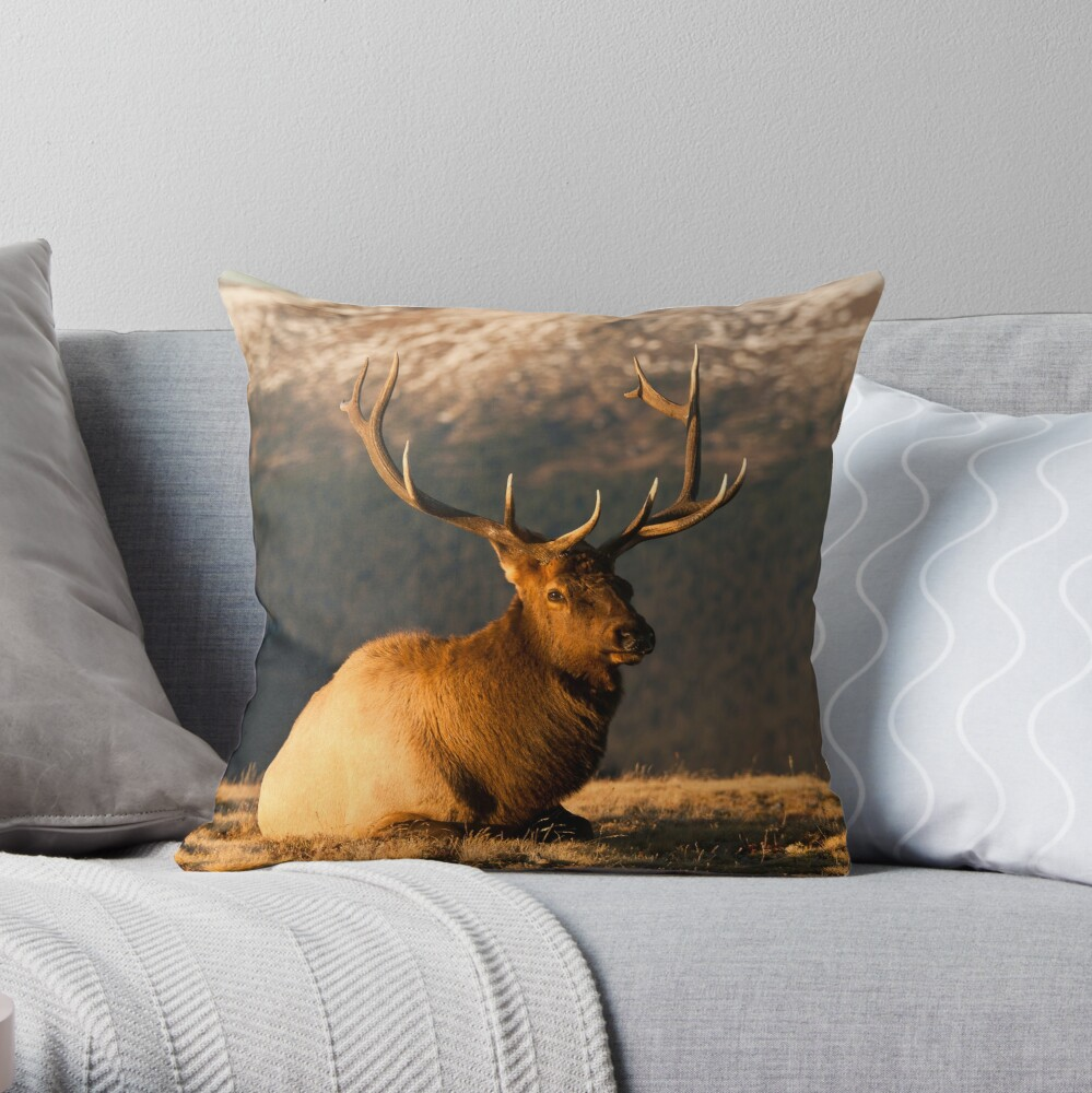The Great Bull Elk At Rest Throw Pillow