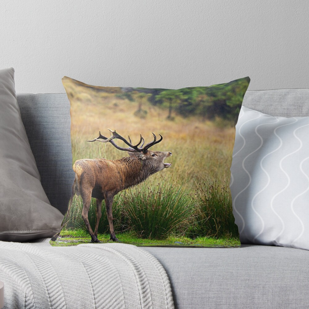 The Sounds of Autumn Throw Pillow