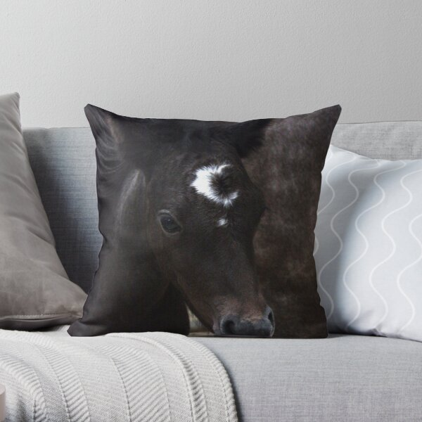 Connemara Pony Foal with amazing markings Throw Pillow