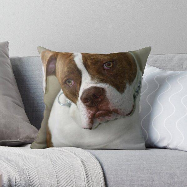 Pleeezzzz just one more! Throw Pillow