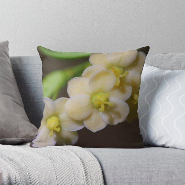 Phyllanthus microcladus Throw Pillow