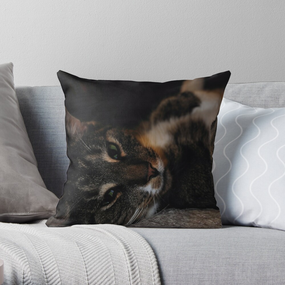 Mr Dribbles Plays Coy Throw Pillow