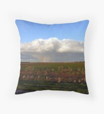 It's Raining Rainbows - Wogollow Farm, Benerembah Throw Pillow