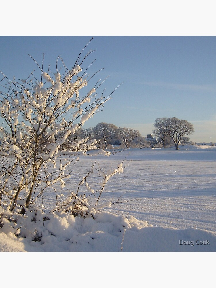 Winter Scene Dalmeny by DougCook