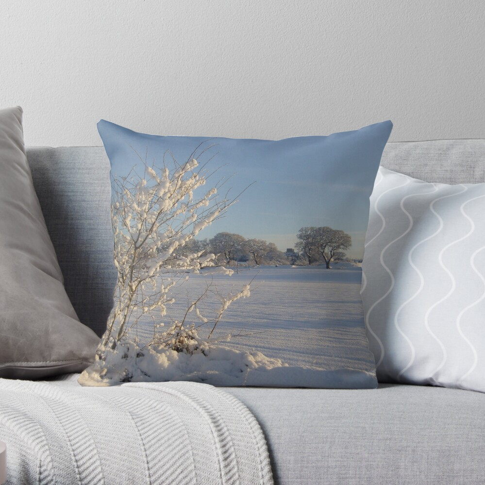 Winter Scene Dalmeny Throw Pillow