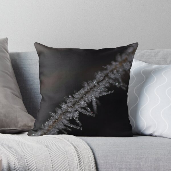 Frost #2 Throw Pillow