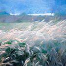 «Campos de trigo» de linaji