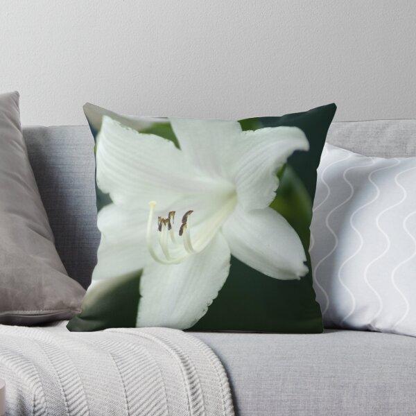 Plantain Lily Throw Pillow