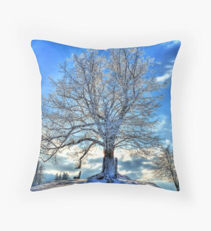 Against the Winter Throw Pillow