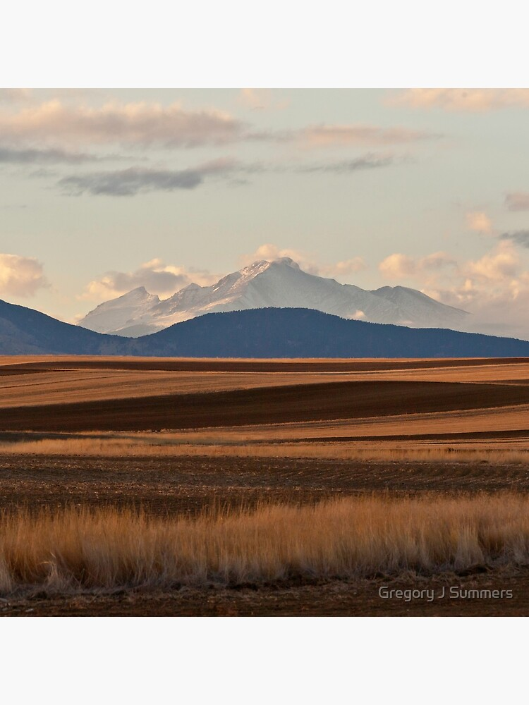 Wheat Fields and Longs Peak by nikongreg