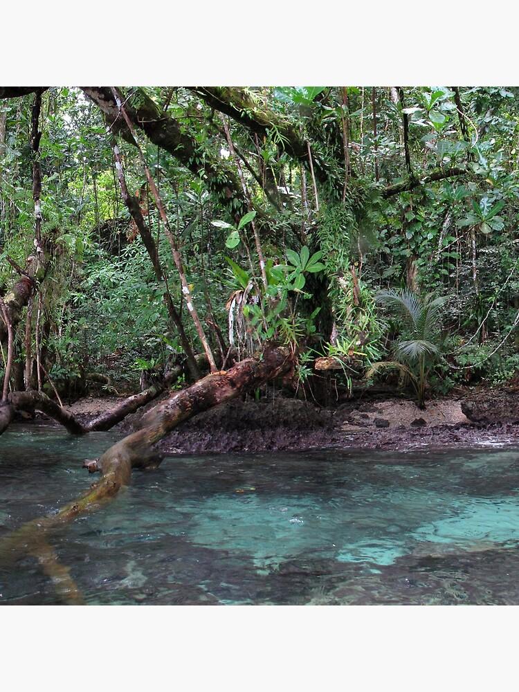 Jungle Shoreline III by neoniphon