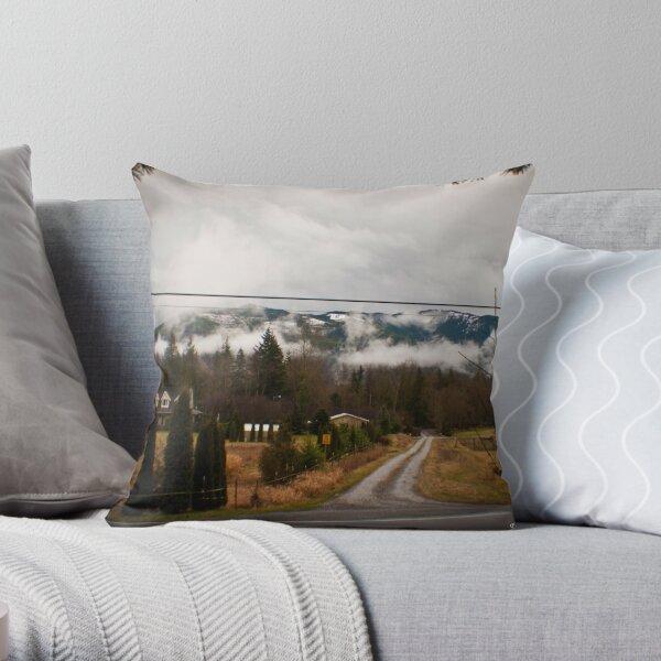 Washington Winter Throw Pillow