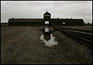 Auschwitz Birkenau - Death Gate 3 by Peter Harpley