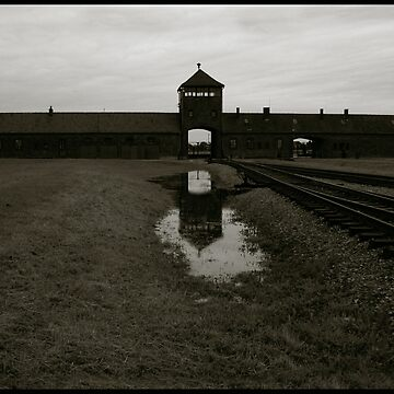 Auschwitz Birkenau - Death Gate 3 by PeterHarpley