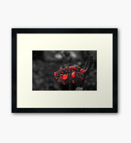 Redbubbles Framed Print
