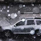 Vorbereitet für den Schnee von Kasia-D