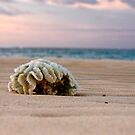 Washed up by Leanne Robson