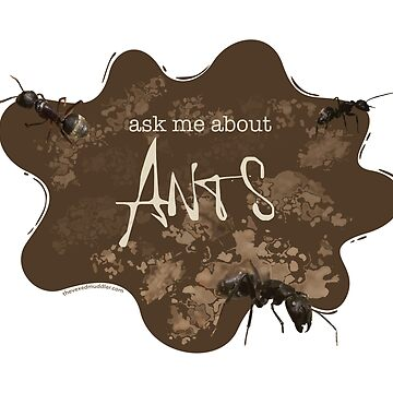 Ask me about ANTS by thevexedmuddler