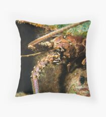 Crawfish (Spiny Lobster), Nassau, Bahamas Throw Pillow