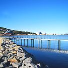 Glorious Winter's Day - Albany Foreshore by Ruth Tinley
