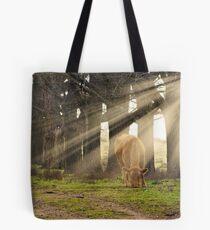 Morning Sunlight Tote Bag