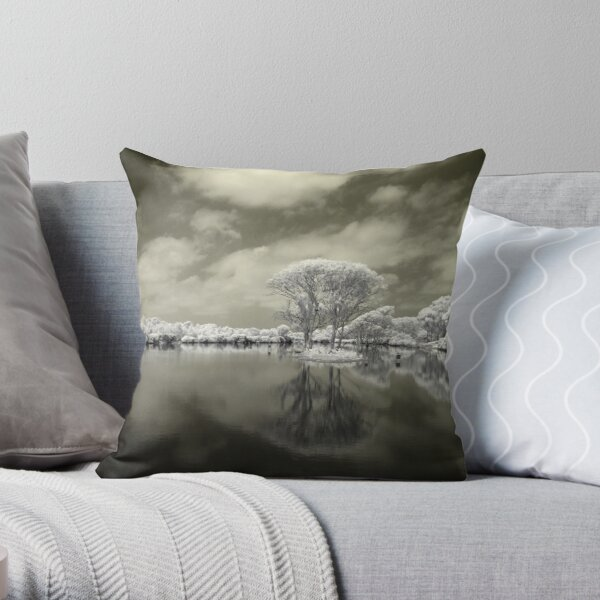 Reflecting on the Glory of Creation Throw Pillow