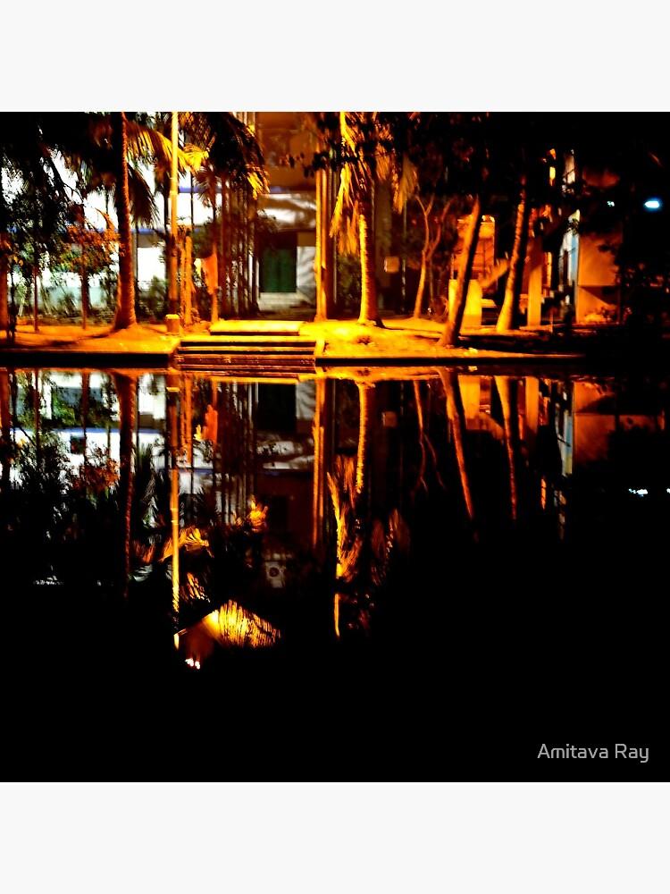 Reflection by amitavaray