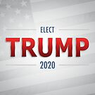 Elect Trump 2020 by morningdance