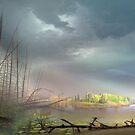 Muskoka's Lands by Igor Zenin