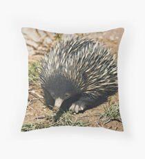 Australian Echidna 3 Throw Pillow