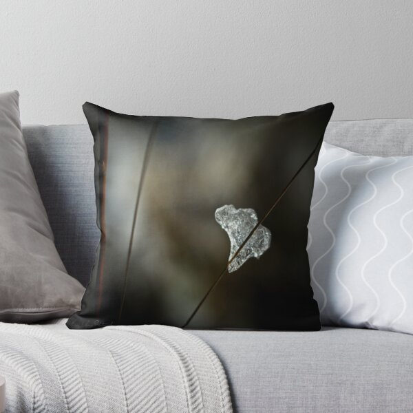 Ice of Africa Throw Pillow