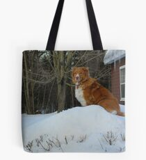 Bolsa de tela King of the Hill - Dog Style