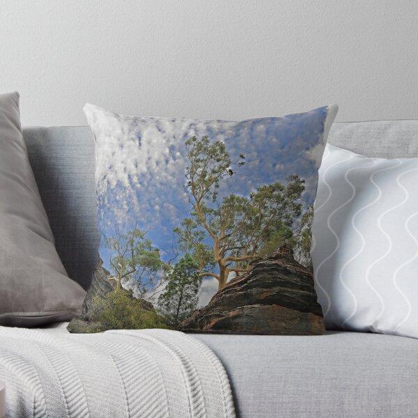 Dunn's Swamp - Kandos NSW Australia Throw Pillow