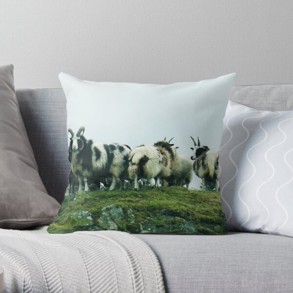 Jacob's Sheep Throw Pillow