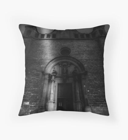 A Meager Existence Throw Pillow