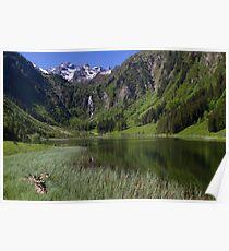 Lake Bodensee Poster