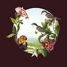 Orchids and Birds by DVerissimo