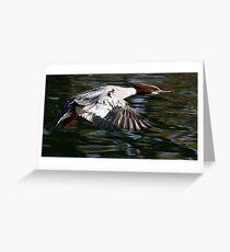 Flight Of The Goosander Greeting Card