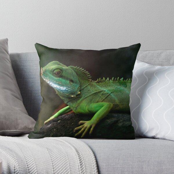 Little dragon 3 Throw Pillow