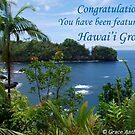Hawai'i Group Feature Banner by Grace Anthony Zemsky
