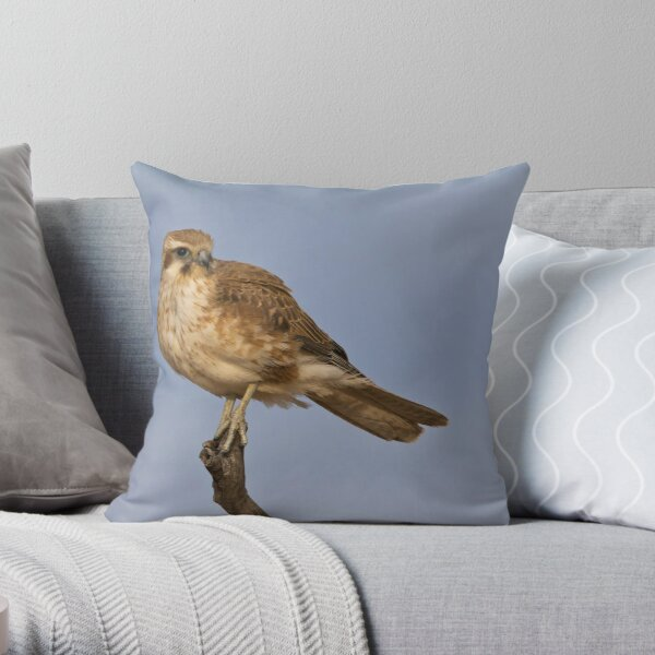Brown Falcon - Winton Throw Pillow