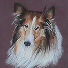 Bonnie the Rough Collie by cathyscreations