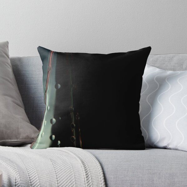 Ode to glass (2) Throw Pillow