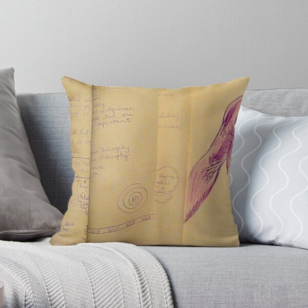 Philosophy Notes Throw Pillow
