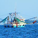 Shrimp on the Bay by BShirey
