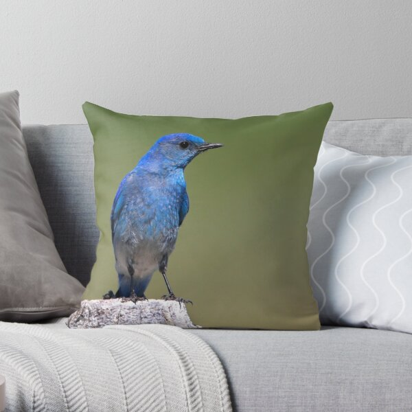 Black-eyed Beauty Throw Pillow