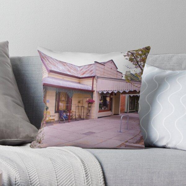 Vintage Ally Throw Pillow