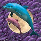 «sueño del delfín» de STORMYMADE